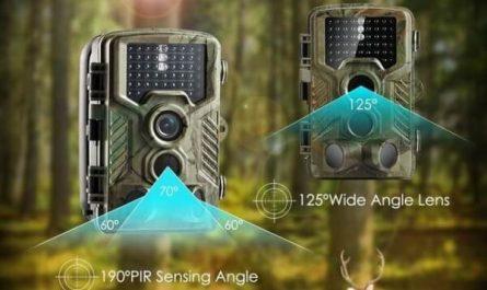 Meilleure caméra de chasse