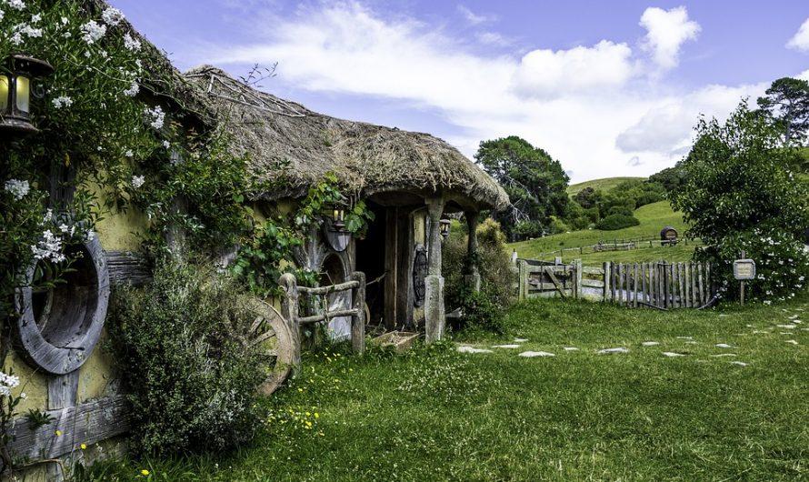 Visiter la Nouvelle-Zélande en famille : quelques conseils à considérer